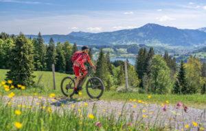 vélo montagne proche camping