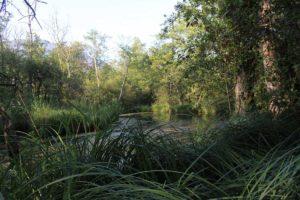 Marais de lavours