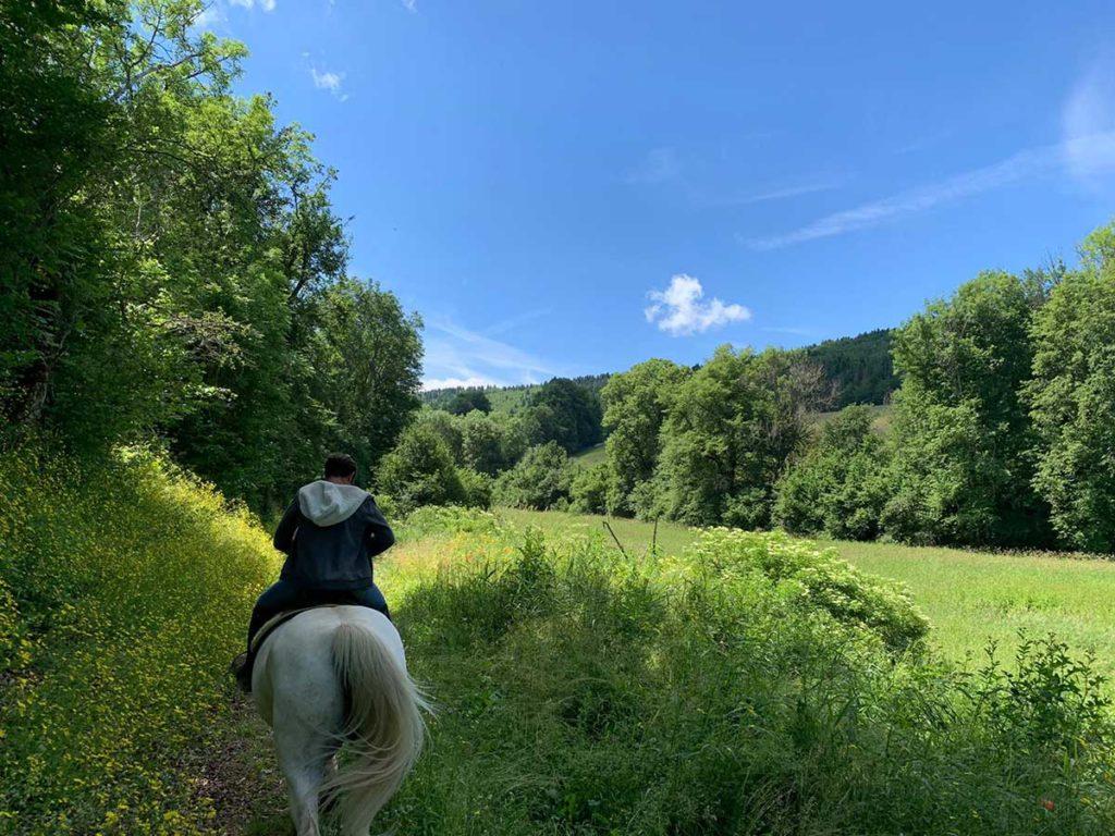 Paardrijden in Savoie