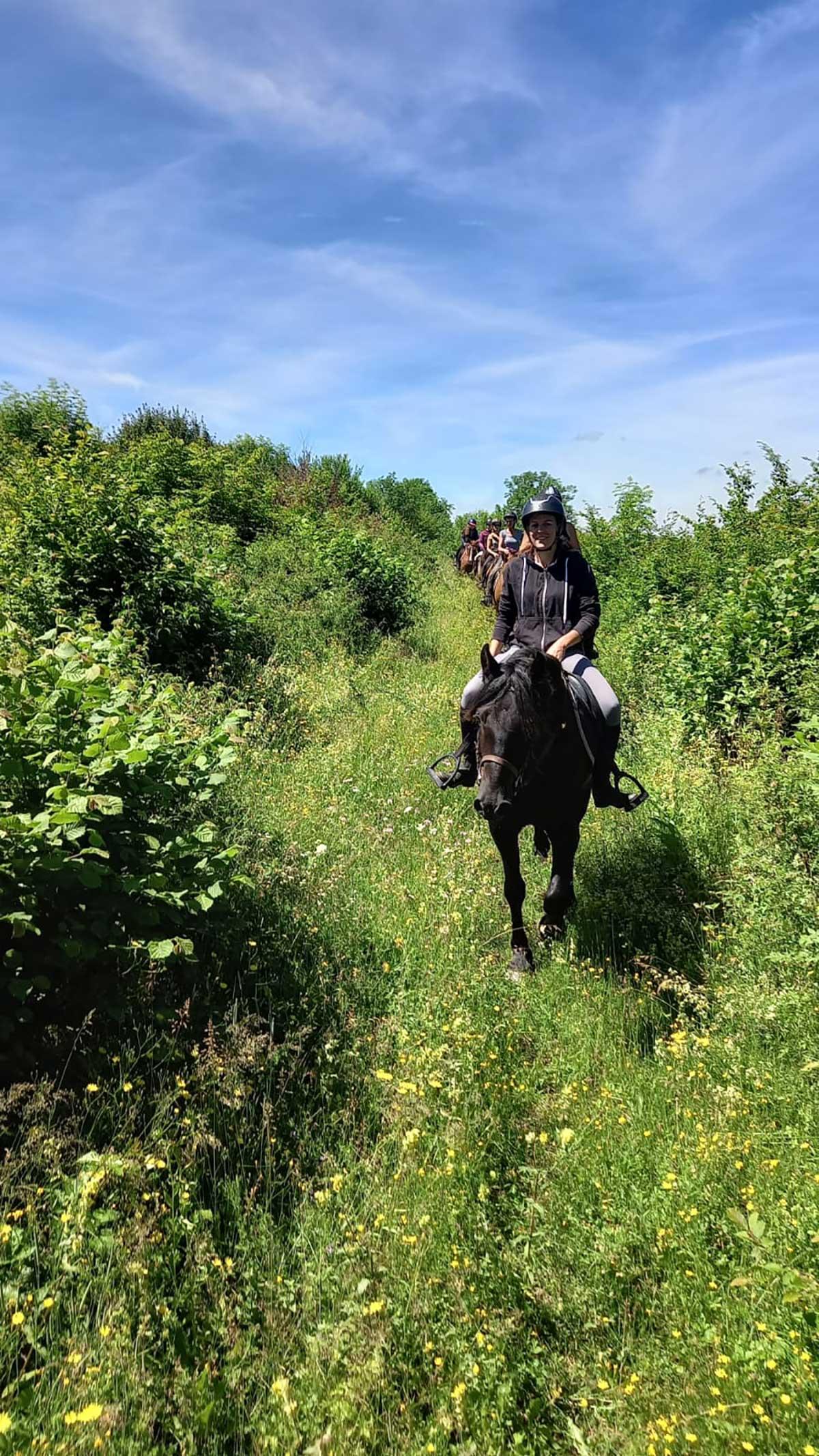 équitation près du camping