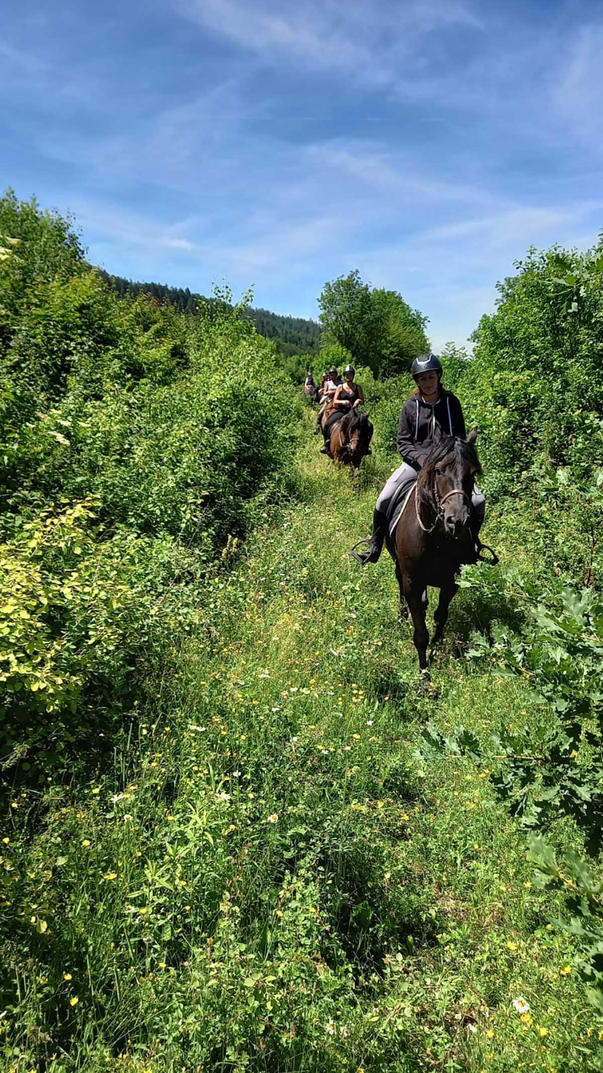 camping équitation savoie